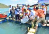 KKP memberikan bantuan benih ikan kepada masyarakat Mataram pada Senin (19/6), agar masyarakat setempat kembali beralih profesi dari penangkap benih lobster menjadi pembudidaya ikan. Dok. Humas KKP/Dianaddin