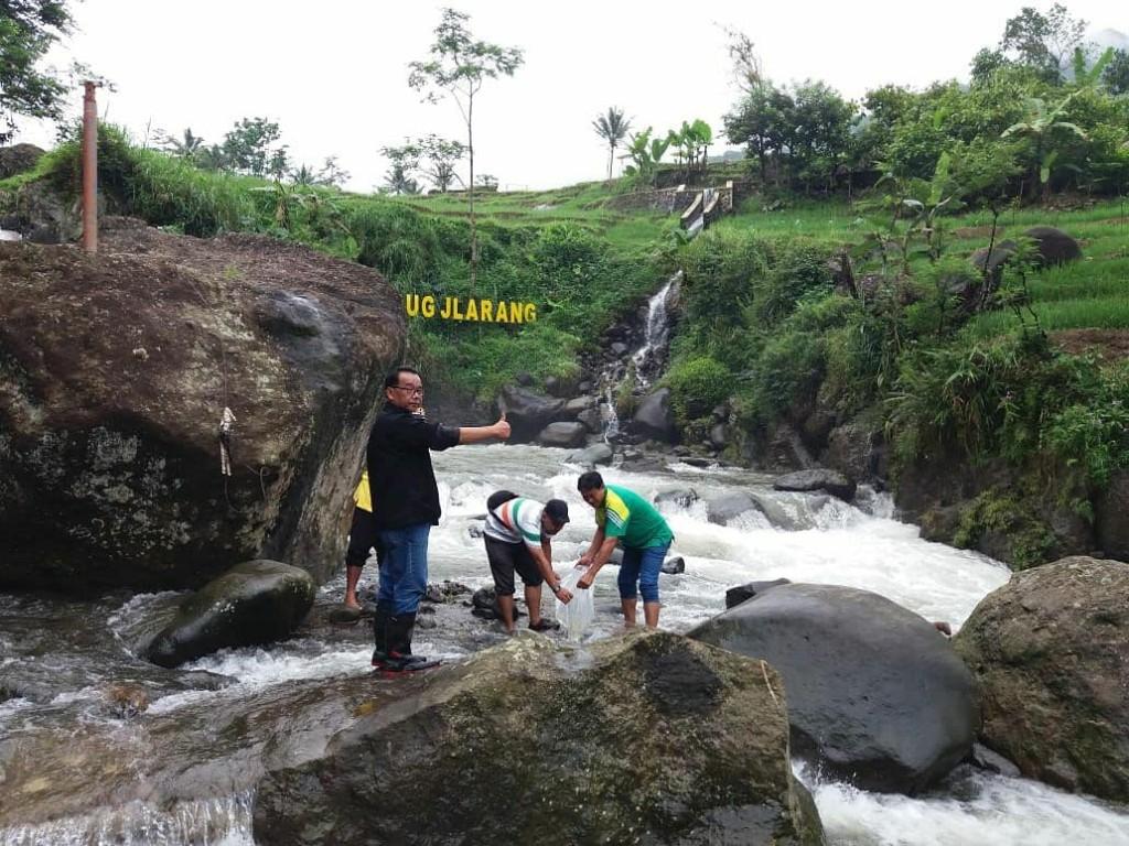 Restocking ikan ke sungai (Foto: KKP)