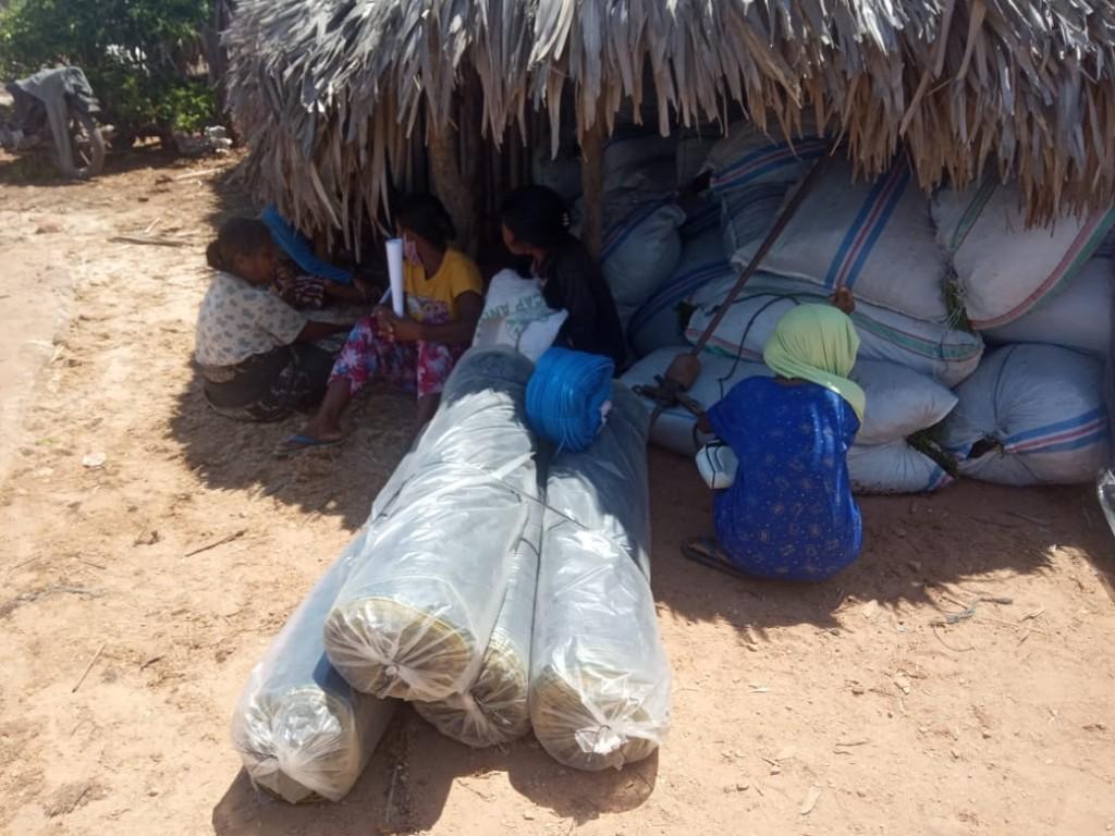 Bantuan bibit dan sarana prasaran budidaya rumput laut (Foto: KKP)